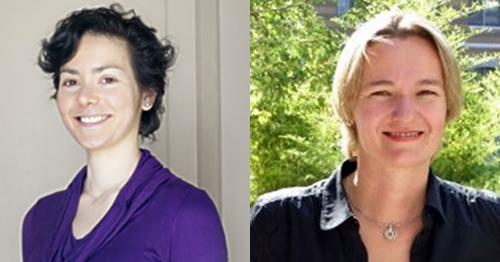 Noémie Dominguez(Maître de Conférences en Sciences de Gestion)etUlrike Mayrhofer(Professeur des Universités en Sciences de Gestion)
